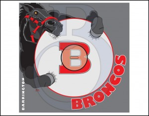 Bronco Mats