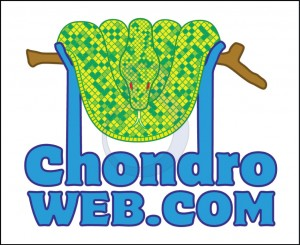 Chondrologo1